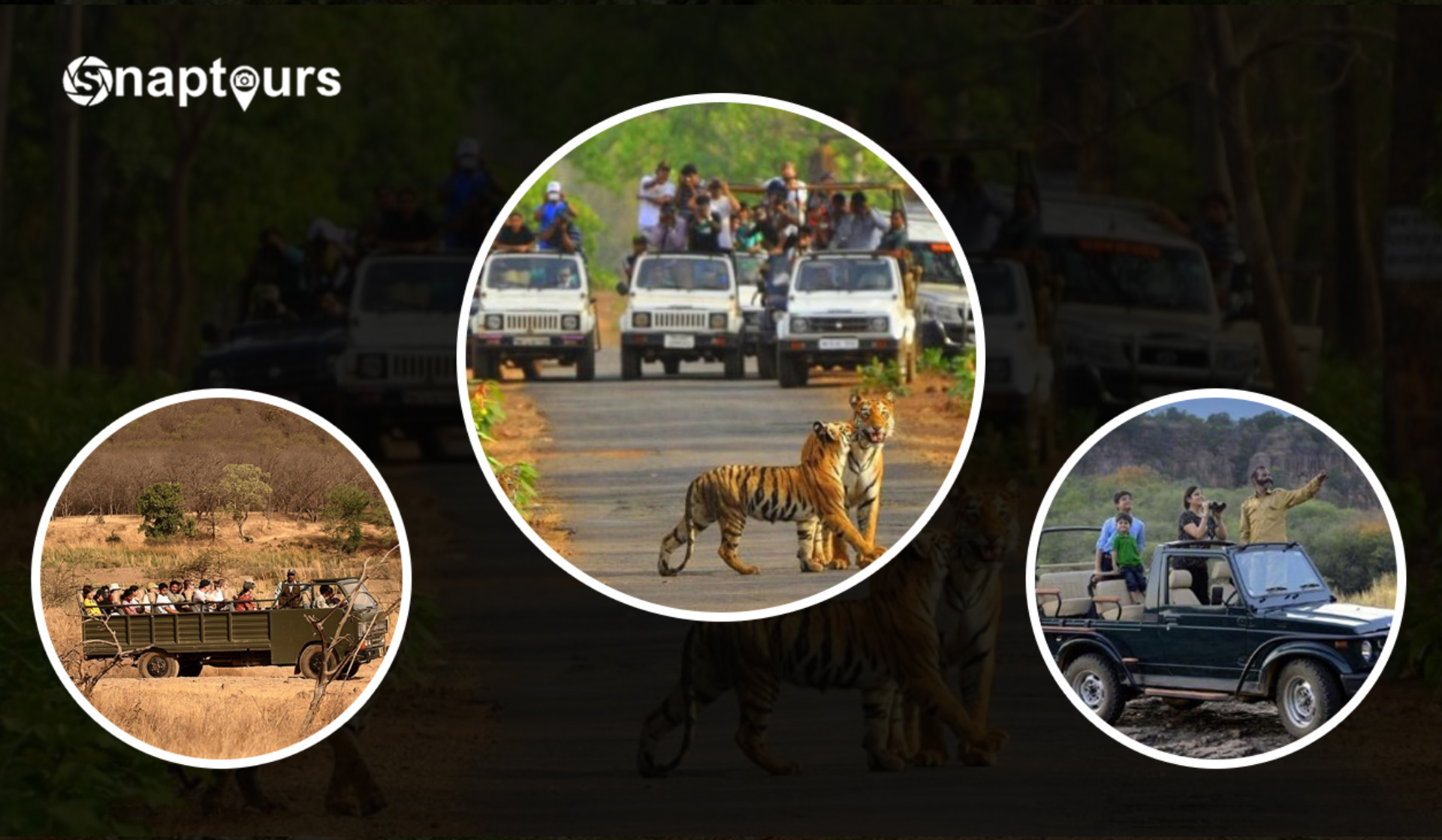 Top Things to do in Sariska Tiger Reserve - A detailed Guide | Snaptours