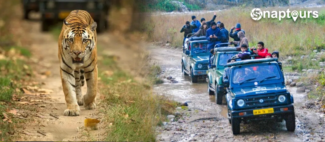 Jim Corbett National Park Jeep Safari Package in India