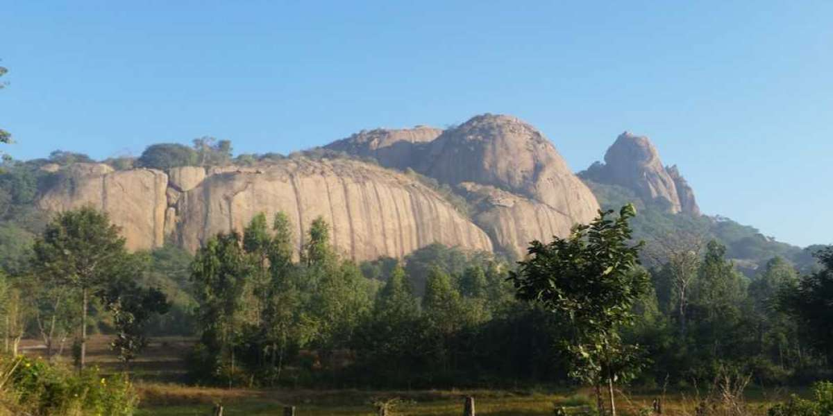 6 Best Hill Stations to Visit near Bangalore - The Fusion Freaks