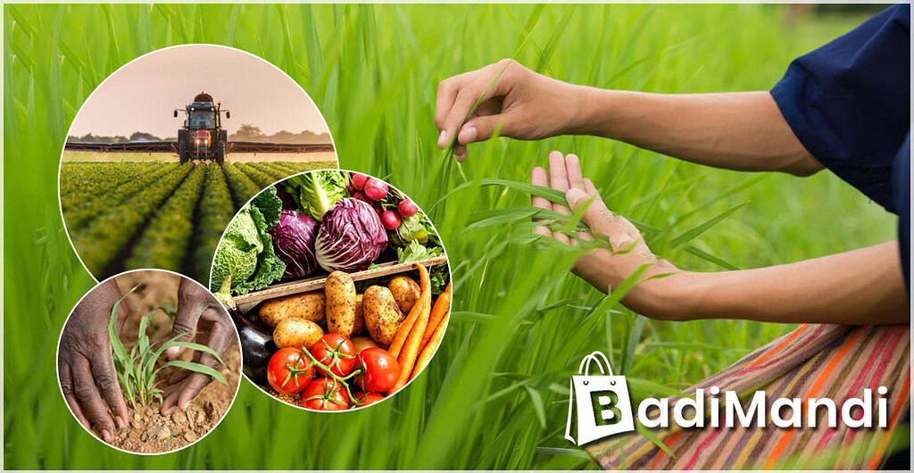 Which is the Best Online Platform to buy Agriculture Products at Wholesale Price? - Farm Advice - Farming and Agriculture Community