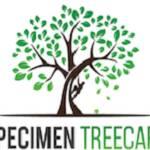 Speci Men Tree Care Profile Picture